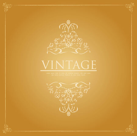 special vintage background  Vector