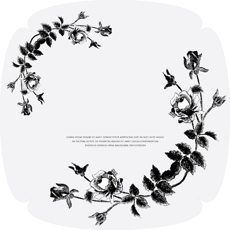 black- white floral background Stock Vector - 10864182