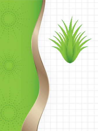 herb medicine: abstract background with a special green aloe vera plant  Illustration