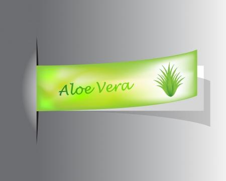 special label with Aloe Vera design Vector