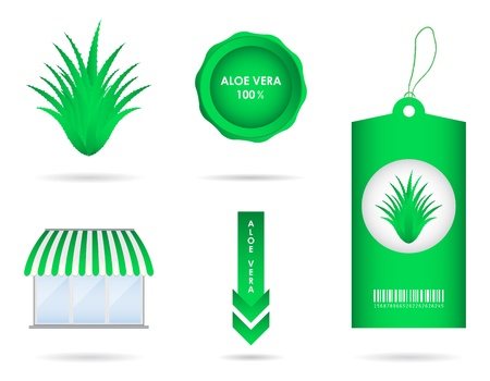 special aloe vera design elements Vector