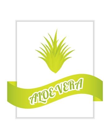 flyer with aloe vera design Stock Vector - 20989950
