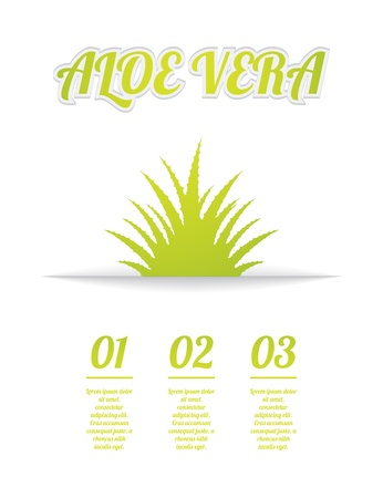 vera: aloe vera background