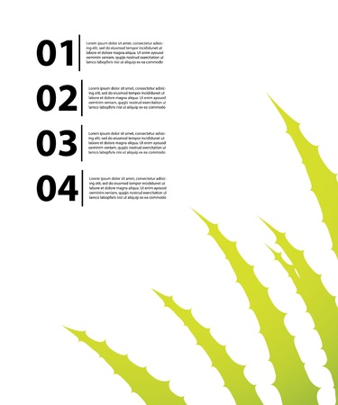 aloe vera plant: special flyer with aloe vera design Illustration