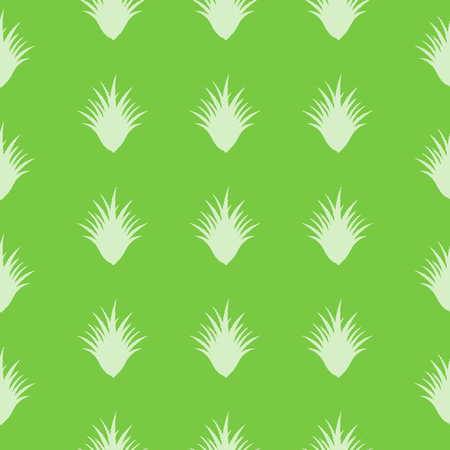 seamless Aloe Vera pattern with special design Stock Vector - 23649547