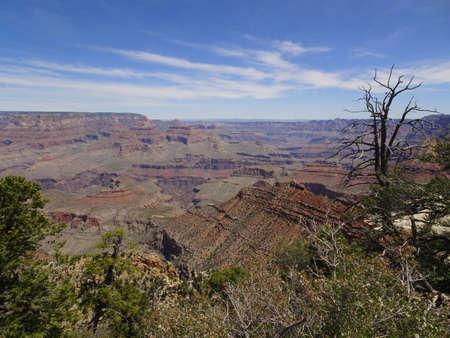 View of Grand Canyon - South Rim