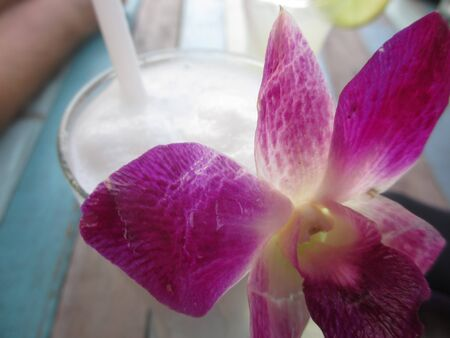 Closeup of a pink orchid flower in a Pina Colada cocktail in a bar in Thailand Stock Photo