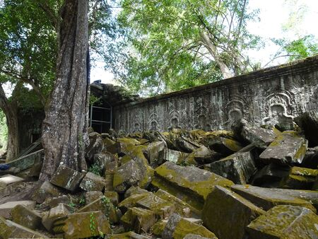 Ancient ruins at Ta Prohm Temple, Siem Reap, Cambodia, Asia
