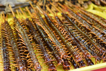 Fried millipedes on a stick at a local Chinese market in Beijing Stock Photo
