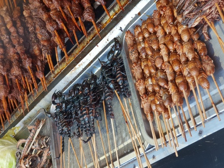 Fried insects on a stick at a local Chinese market in Beijing