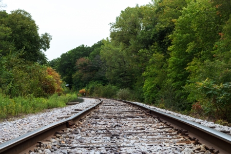 Railroad in the woods Stock Photo - 15854553