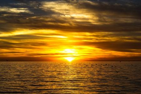 dramatische gouden zonsondergang over de oceaan met vliegende meeuwen