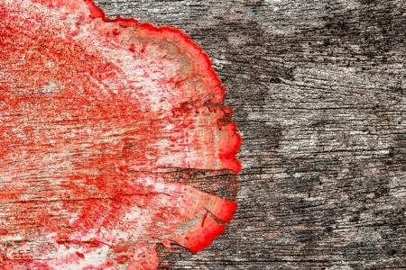 close-up van een oude ruwe houten textuur met rode meeldauw