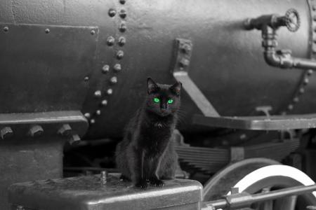zwarte kat met groene ogen op zwart vintage trein locomotief