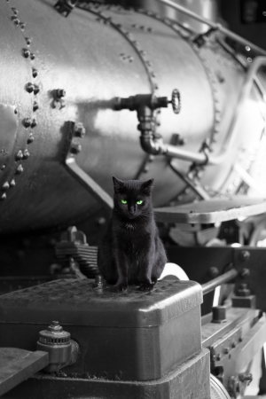 black cat with green eyes on black vintage train locomotive Stock Photo