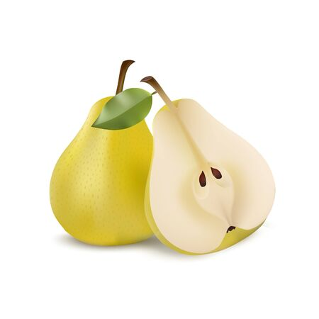 Two yellow pears in modern realistic style isolated on white background