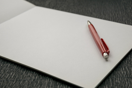 Blank album with red pen