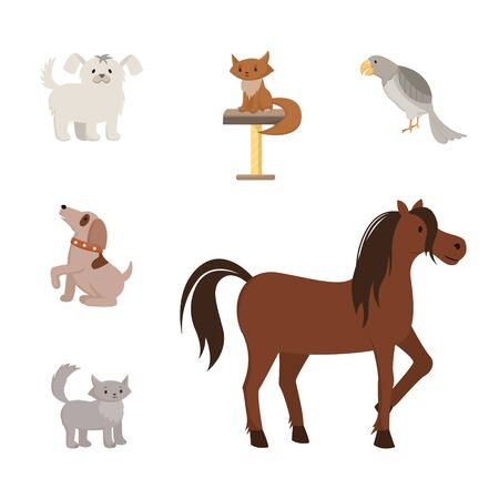 Domestic animals flat vector illustrations set. Cartoon toy dogs, purebred pets, mongrel cats, puppies. Exotic bird, grey parrot and strong horse, stallion, mare with beautiful mane hair