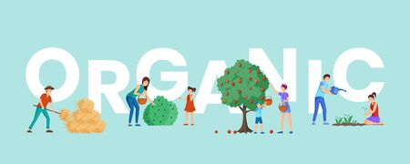 Organic farm harvest word concept banner. Parents and children gathering ripe bio apples and picking black currant with baskets. Rancher near haystack, gardeners planting flowers cartoon characters