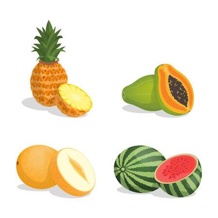 Pineapple, papaya, melon, and watermelon vector cartoon illustration isolated on white background.