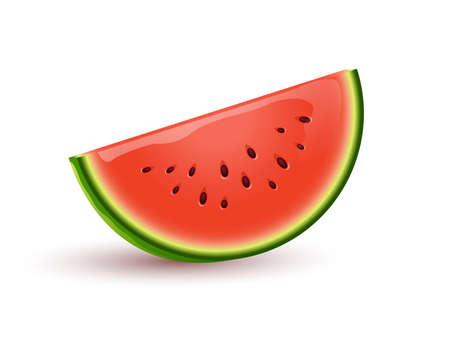 Fresh and ripe sliced watermelon vector cartoon illustration. Watermelon, summer food full of vitamins.