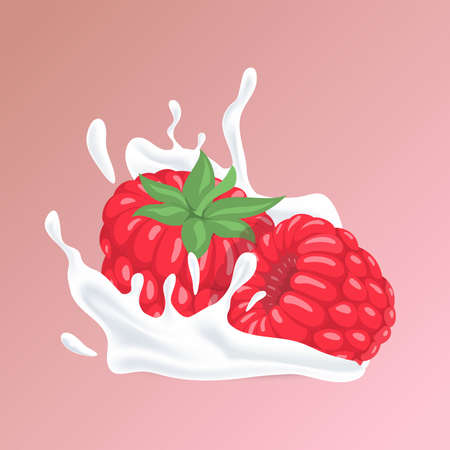 Raspberry and splash of white liquid cartoon illustration. Natural organic cosmetics, yogurt or berry and milk cocktail. 矢量图像
