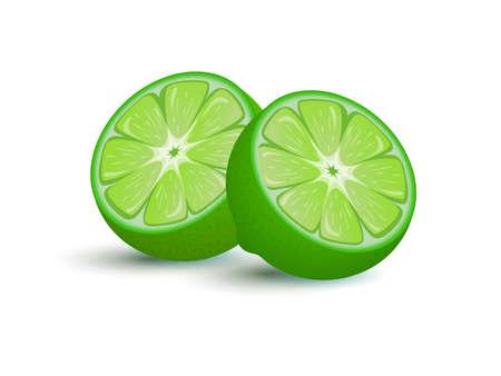 Lime fruit vector cartoon illustration. Exotic citrus full of vitamin c for lemonade, juice, or cocktail. Ilustração