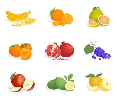 Banana, orange, guava, persimmon, pomegranate, grape, apple, pomelo, and feijoa vector cartoon illustrations. 矢量图像