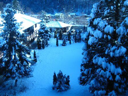 troyan: winter Wonderland