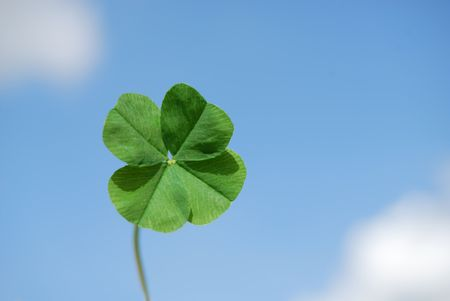 Four leaf clover against sky background