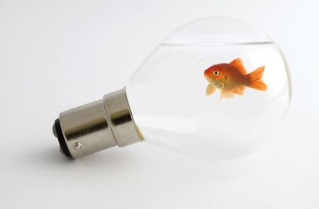Goldfish trapped inside a lightbulb blowing bubbles photo