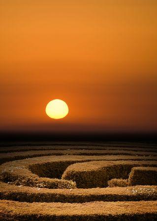 Hedge maze at sunset, problem solving concept 写真素材