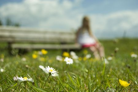 Focus on a daisy as a young girl sits on a bench in the background Stock Photo - 5064452