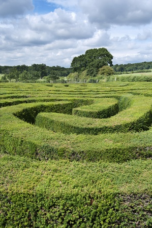 Complex hedge maze landscape photo