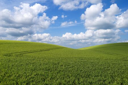 Beautiful rolling hill landscape with a sky of fluffy clouds Stock Photo