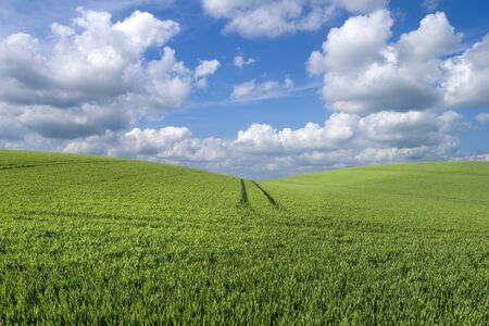 Beautiful rolling hill landscape with a sky of fluffy clouds Stock Photo - 9019872