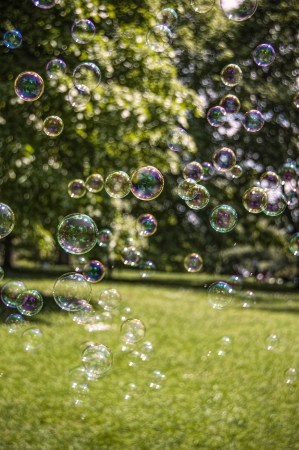 Bubbles floating across a park on a summers day. Stock Photo