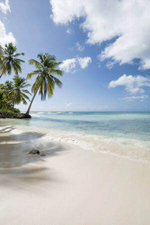 deserted: A stretch of the most beautiful unspoilt Caribbean Coastline
