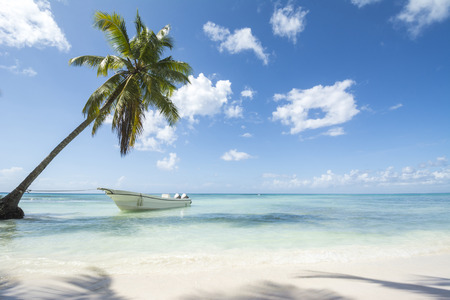 A stretch of beautiful unspoilt Caribbean Coastline with boat