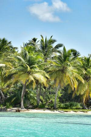 unspoilt: A stretch of beautiful unspoilt Caribbean Coastline