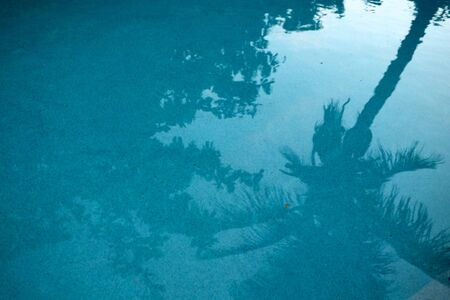 Dead calm swimming pool with coconut tree reflection. Early morning shot. photo