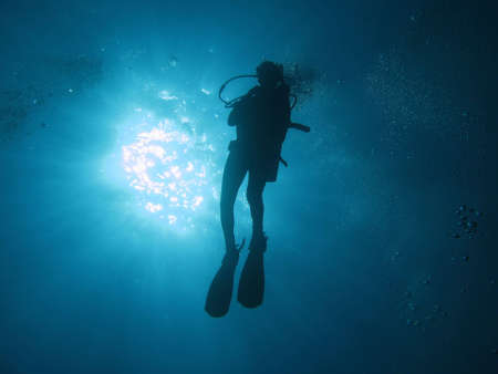 oxigen: Diver in backlight.