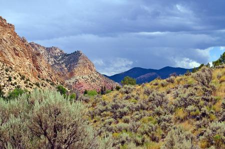 Navajo Cliffs photo