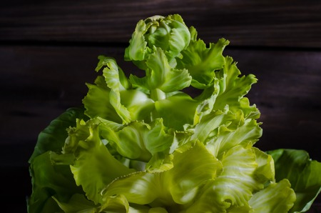 Decorative cabbage flower on a wooden background with interesting backlighting.