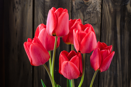 Spring bouquet of red tulips on a wooden background in a crystal vase.