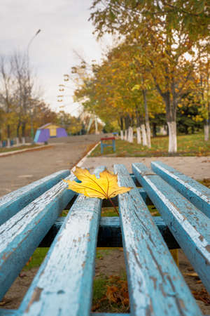 Childrens colorful playground in the park in autumn. 版權商用圖片