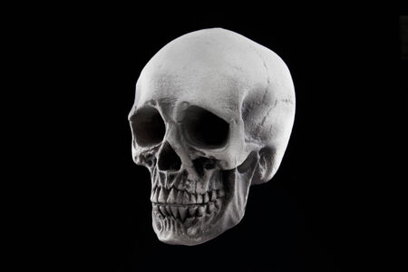 stock photography: A Halloween skull decoration isolated on a black background