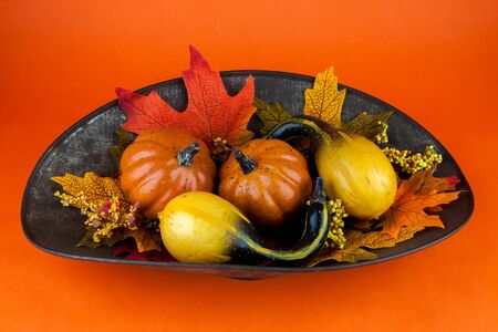 stock photography: Gourds  Autumn Leaves on orange background