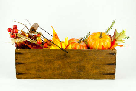 stock photography: Gourds  Autumn Leaves in a Cheese Box on White Background