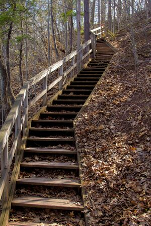 crooked: A crooked Stairs case in the woods